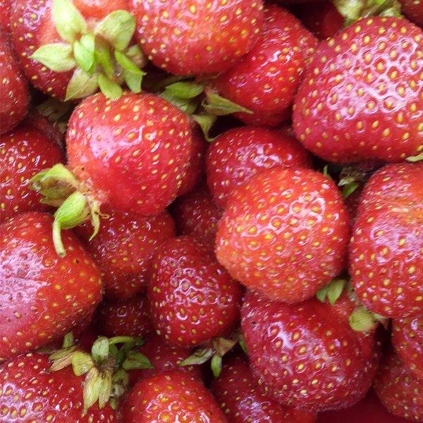Inspiration Happy Fruit- Erdbeere Aquarell Ms.Hey!_textildesign_